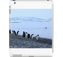 Adelie Penguins Antarctica 7 iPad Case/Skin