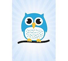 Sweet & cute owl Photographic Print