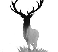 The Stag of Dawn by geofflong