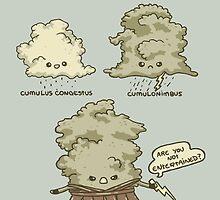 Cumulus by Lili Batista