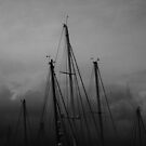 Mast's by DarrynFisher