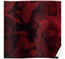 Blood red flower Poster