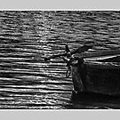 A Boat by Dr. Harmeet Singh