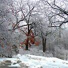 A Snow Scene by Linda Miller Gesualdo