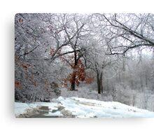 A Snow Scene Metal Print