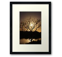Bringing The Day To Life Framed Print