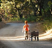 Over the river and through the woods ... Carmel Valley, CA by Colleen Marquez