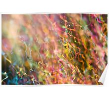Iridescent Colours of Soap Film Poster