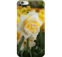 "Double Narcissus ""Lingerie"" iPhone Case/Skin"