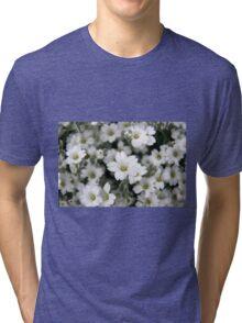Snow in Summer Tri-blend T-Shirt