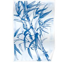Tropical blue bamboo Poster