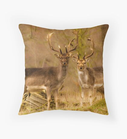 Brothers In Arms. Throw Pillow