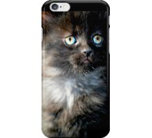 Bright Eyes the Kitten / Cat iPhone Case/Skin