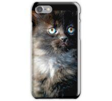 Bright Eyes the Kitten / Cat iPhone Case/Skin