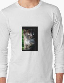 Bright Eyes the Kitten / Cat Long Sleeve T-Shirt