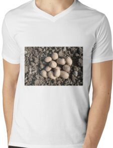 Frieslander potatos ready for planting in an allotment Mens V-Neck T-Shirt