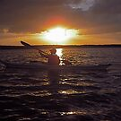 kayaking in Florida bay at dusk by healingart