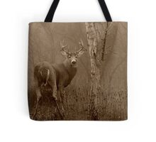 White-tailed Deer Buck Sepia Tote Bag
