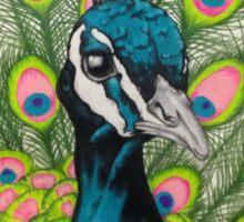 Vibrant Peacock Sticker