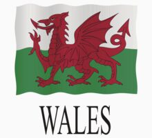 Welsh flag Kids Clothes