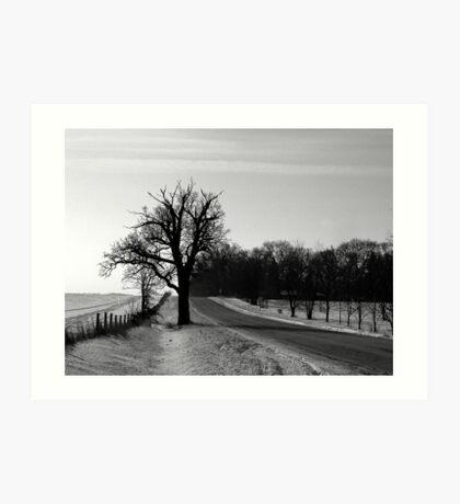 Scraggly Tree in the Countryside Art Print