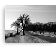 Scraggly Tree in the Countryside Canvas Print