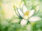 Flowers...Neroli by © Janis Zroback