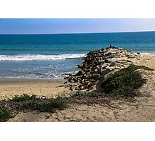 Santa Monica, California Photographic Print