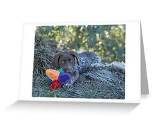 My Puppy Toys... Greeting Card