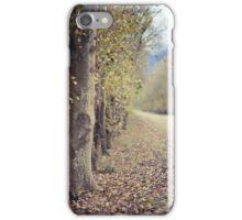 Autumn whisper   iPhone Case/Skin