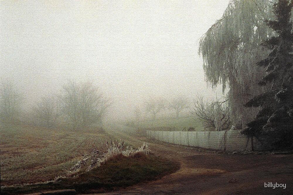 Winter in Tervuren by billyboy