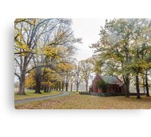 Gostwyck Gold - Uralla NSW Canvas Print