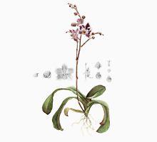 Phalaenopsis Orchid Unisex T-Shirt