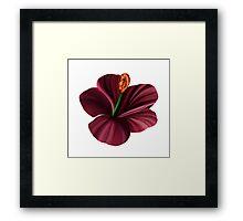 Best Fantasy Flower 2 Framed Print