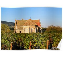 Church in the Vineyard Poster