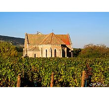 Church in the Vineyard Photographic Print