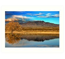 Bosque Morning Art Print