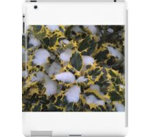 Winter Holly iPad Case/Skin