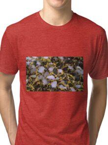 Winter Holly Tri-blend T-Shirt