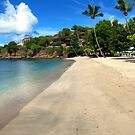 Lance aux Epines Beach, Grenada. by John Dalkin