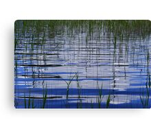 Water & Reeds Canvas Print