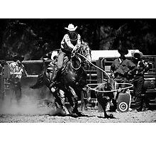 Broncos and Bulls # 4 Photographic Print