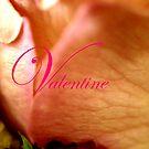 Valentine Rose by BecQuist
