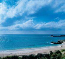 Bathurst Point - Rottnest Island by Heather Linfoot