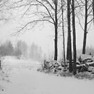 Winter is coming by Heather Thorsen