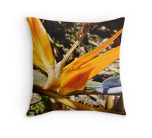 Bright Orange Bird of Paradise-(Macro) Throw Pillow