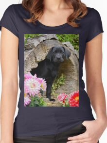 Lab puppy playing hide and seek Women's Fitted Scoop T-Shirt