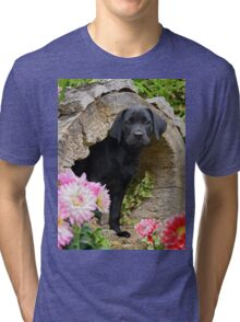 Lab puppy playing hide and seek Tri-blend T-Shirt