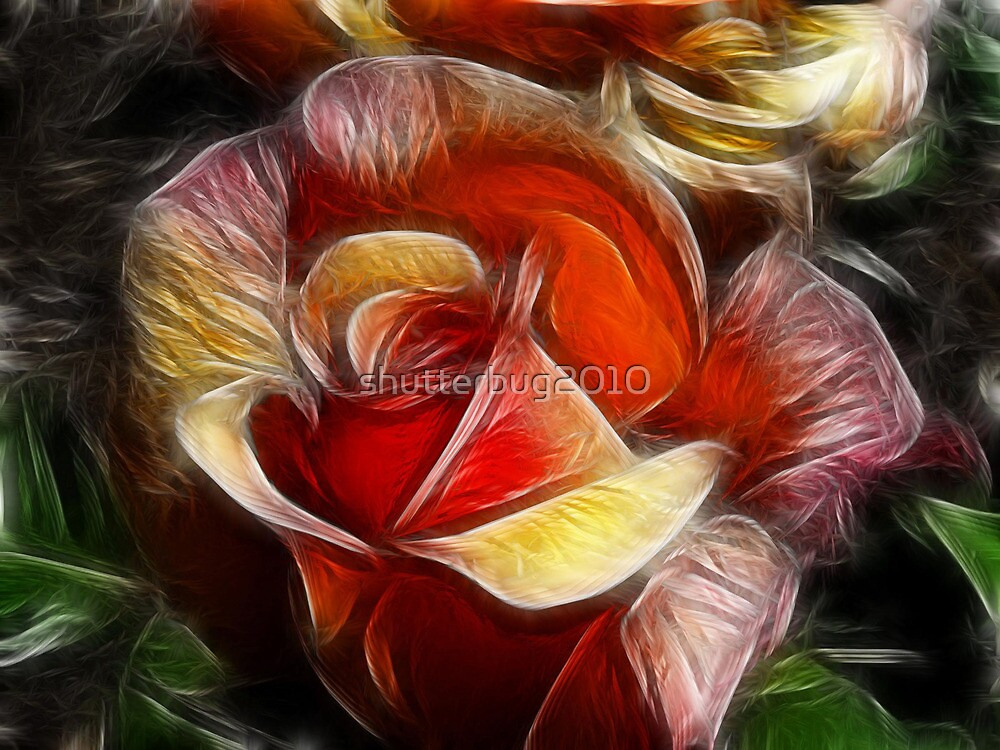 Rose Petal Dreams by shutterbug2010