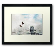 Quail Over Barbed Wire Framed Print